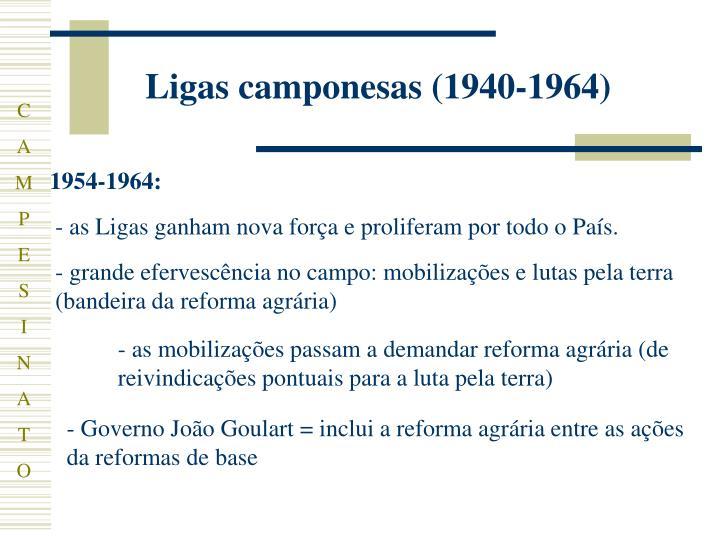 Ligas camponesas (1940-1964)