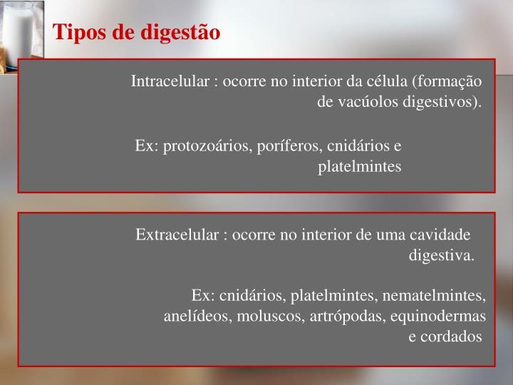 Tipos de digestão