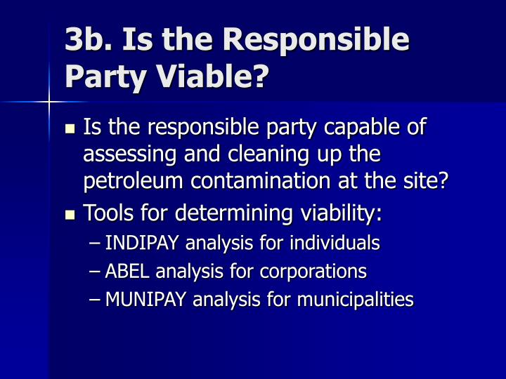3b. Is the Responsible Party Viable?