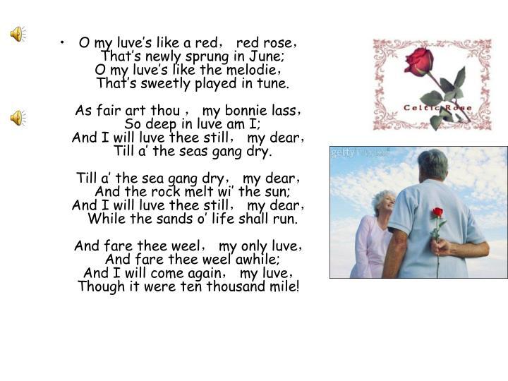 O my luve's like a red