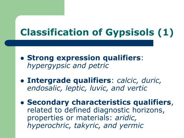 Classification of Gypsisols (1)