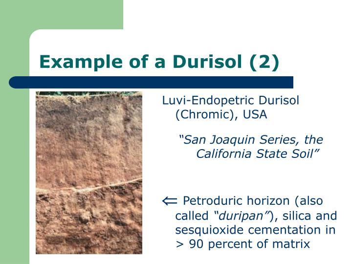 Luvi-Endopetric Durisol (Chromic), USA