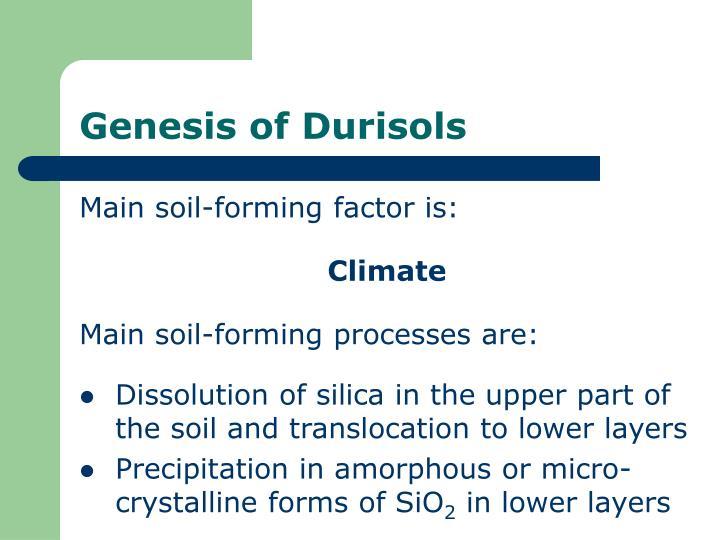 Genesis of Durisols