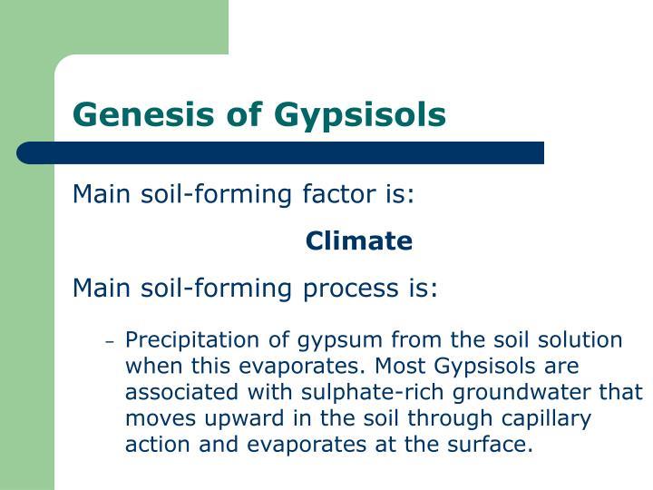 Genesis of Gypsisols