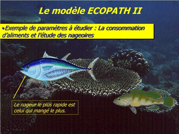 Le modèle ECOPATH II