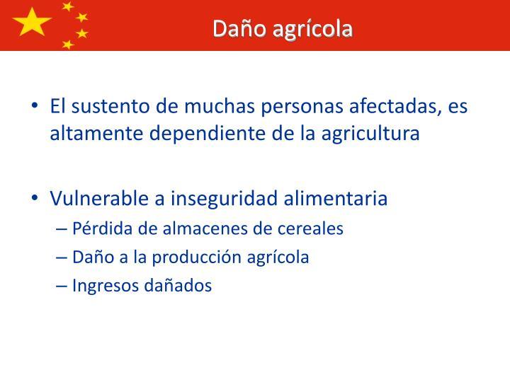 El sustento de muchas personas afectadas, es altamente dependiente de la agricultura