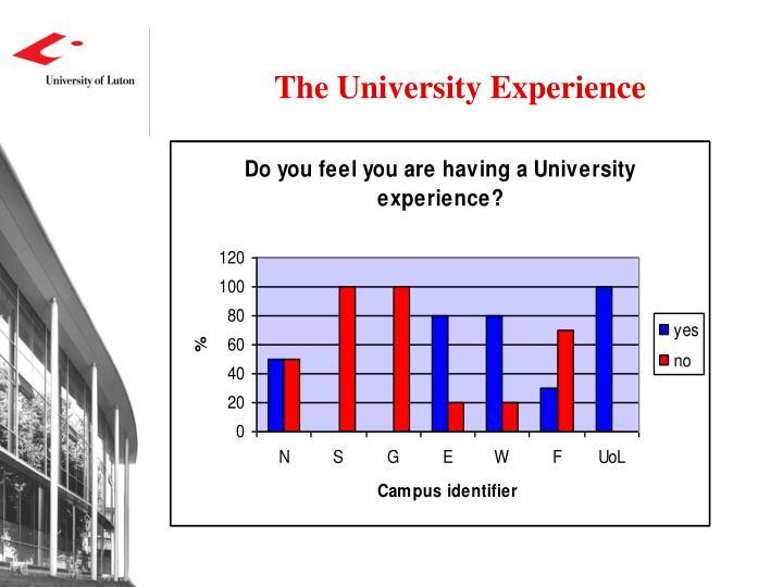 The University Experience