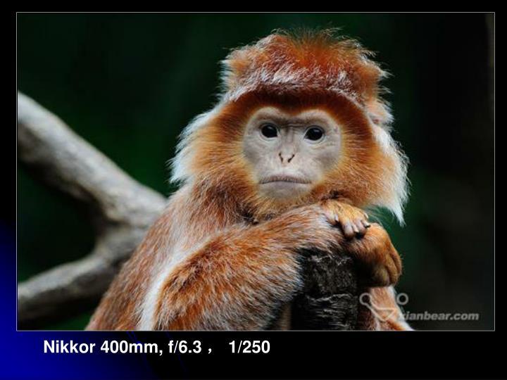 Nikkor 400mm, f/6.3