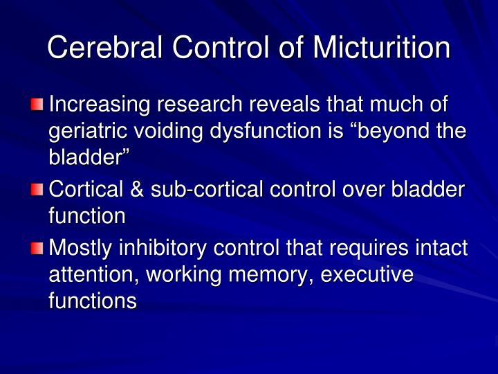 Cerebral Control of Micturition