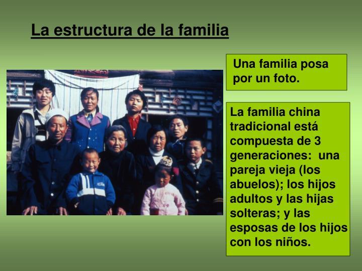 La estructura de la familia