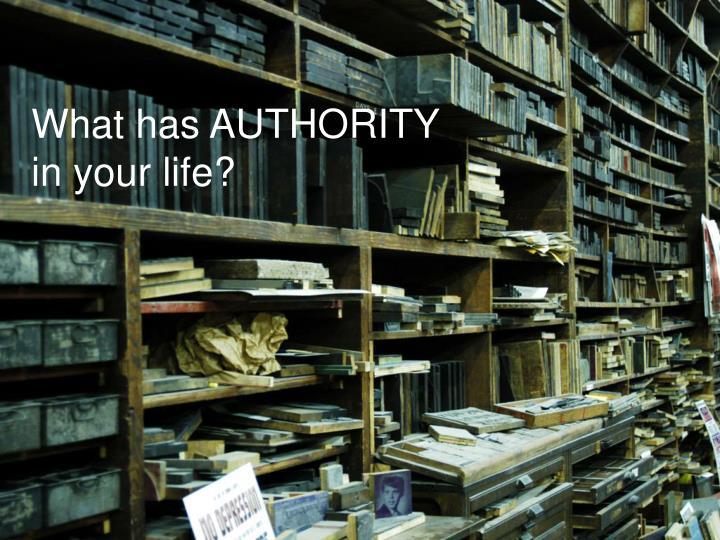 What has AUTHORITY
