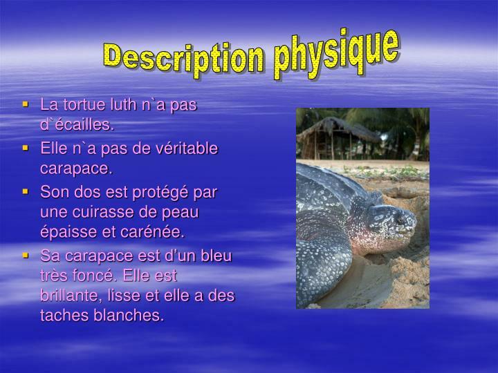 Description physique