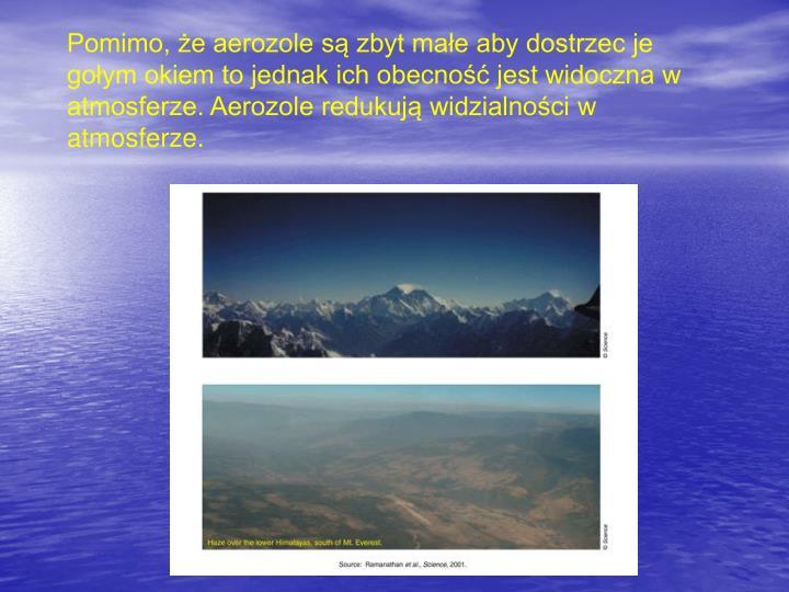 Pomimo, że aerozole są zbyt małe aby dostrzec je gołym okiem to jednak ich obecność jest widoczna w atmosferze. Aerozole redukują widzialności w atmosferze.