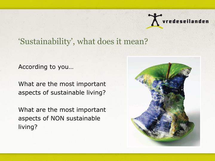 'Sustainability', what does it mean?