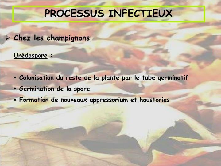 PROCESSUS INFECTIEUX