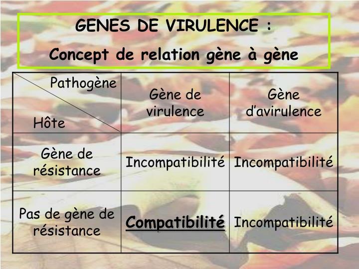 GENES DE VIRULENCE :