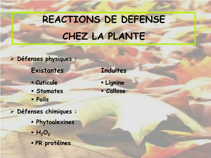 REACTIONS DE DEFENSE
