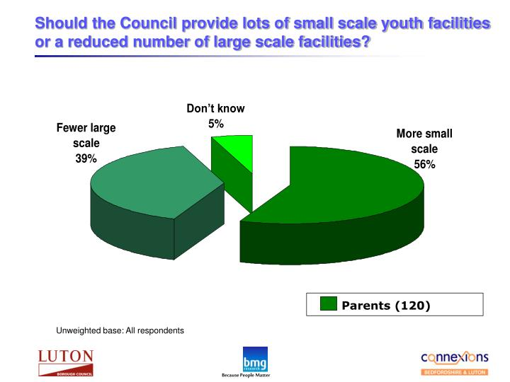 Should the Council provide lots of small scale youth facilities or a reduced number of large scale facilities?