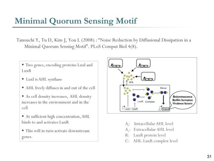 Minimal Quorum Sensing Motif