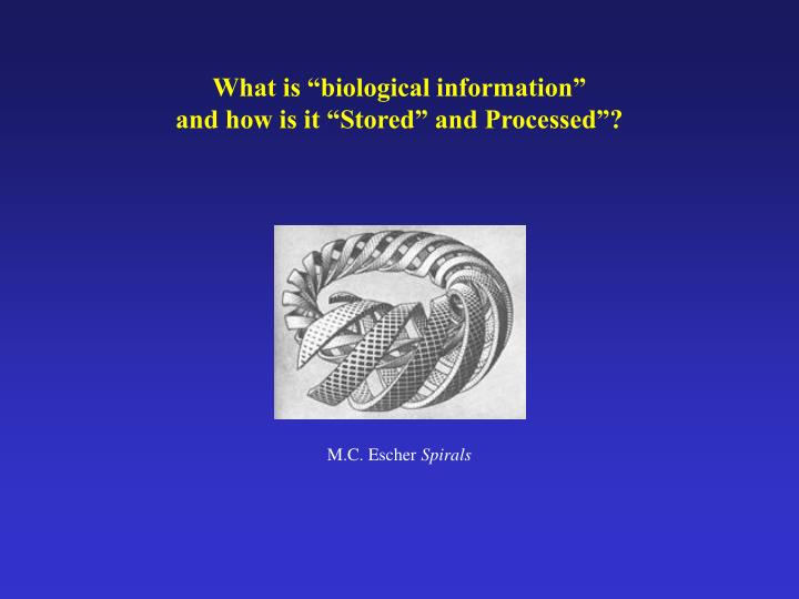 """What is """"biological information"""""""