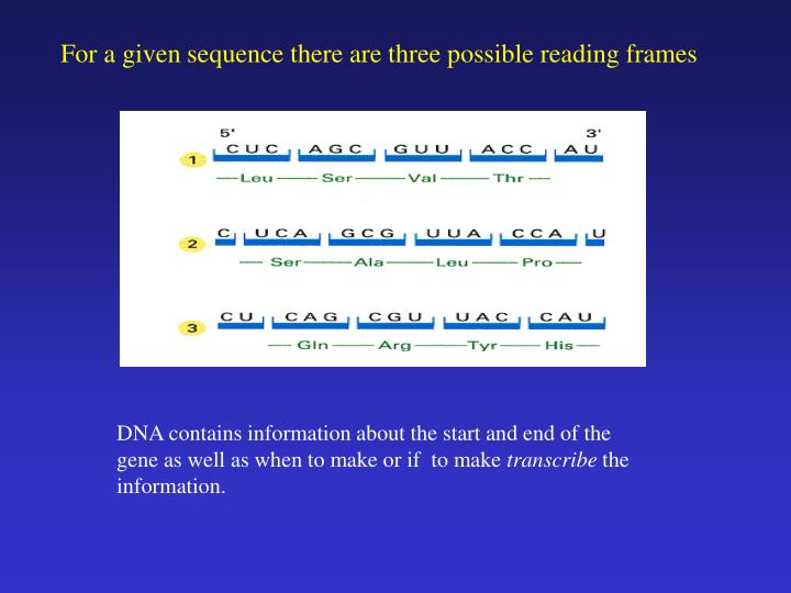 For a given sequence there are three possible reading frames