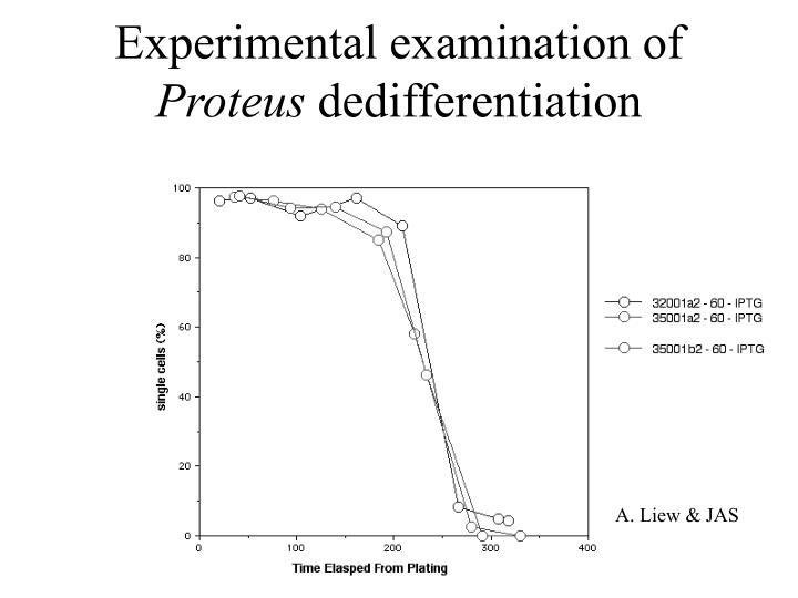 Experimental examination of