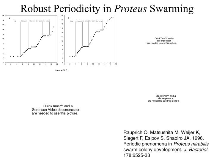 Robust Periodicity in