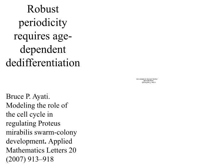 Robust periodicity requires age-dependent dedifferentiation
