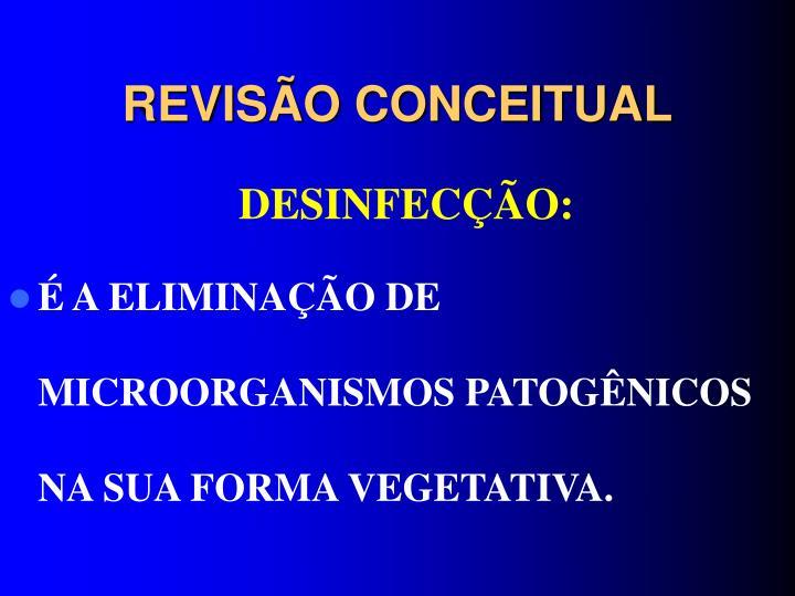 REVISÃO CONCEITUAL