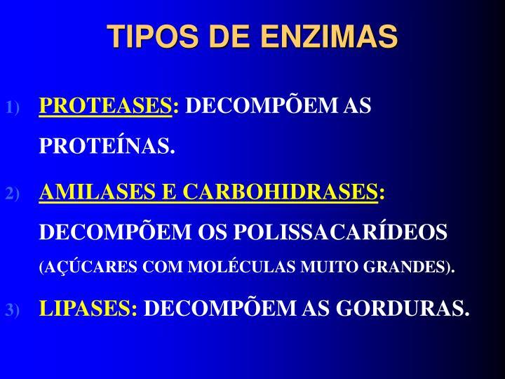 TIPOS DE ENZIMAS