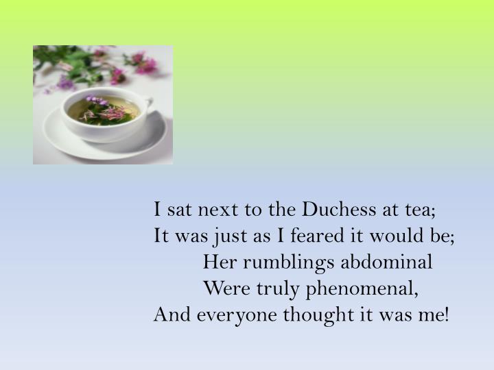 I sat next to the Duchess at tea;