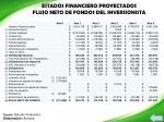 estados financiero proyectados flujo neto de fondos del inversionista