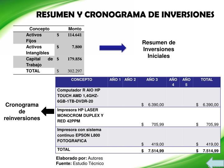 RESUMEN Y CRONOGRAMA DE INVERSIONES