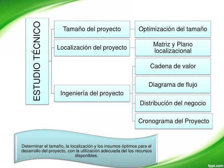 Determinar el tamaño, la localización y los insumos óptimos para el desarrollo del proyecto, con la utilización adecuada del los recursos disponibles