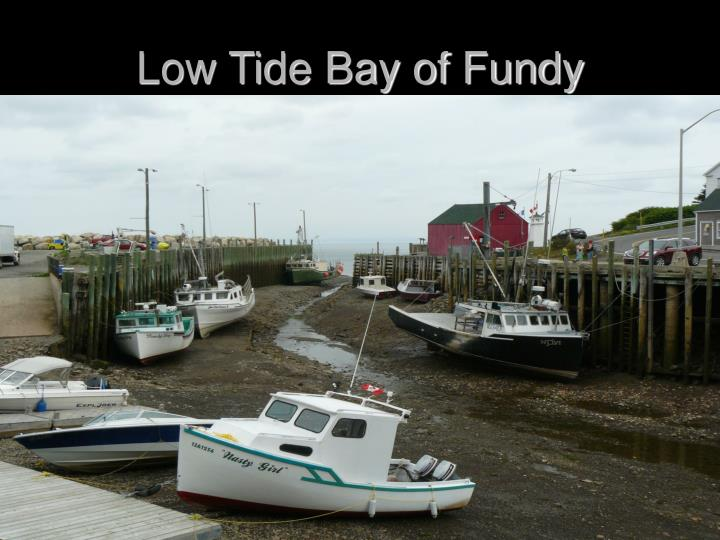 Low Tide Bay of Fundy