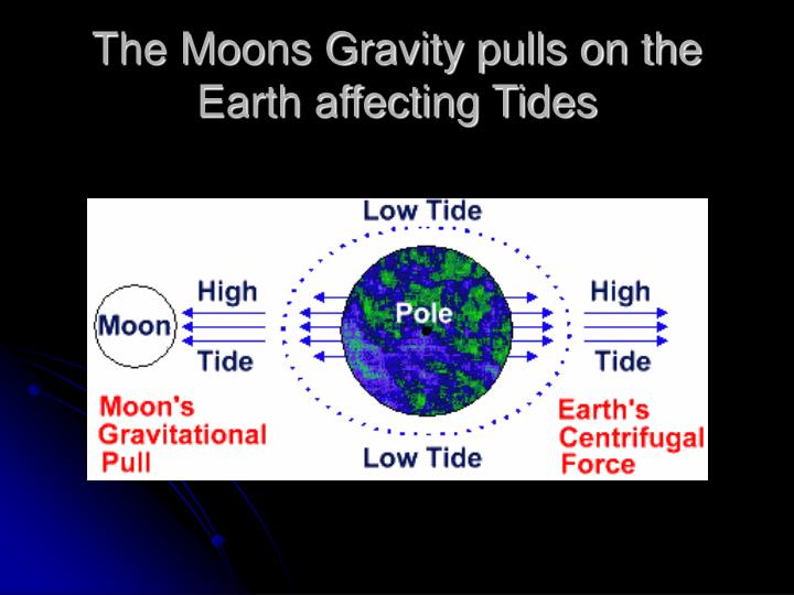 The Moons Gravity pulls on the Earth affecting Tides