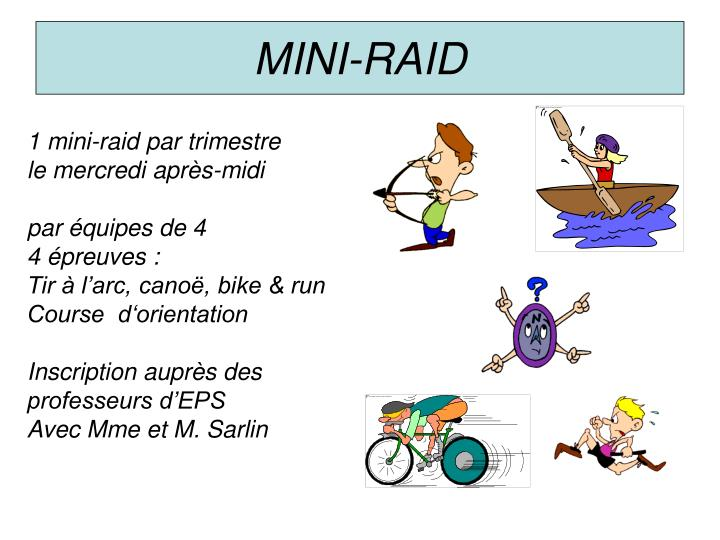 MINI-RAID