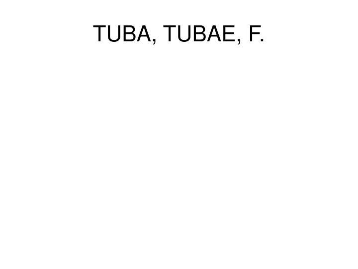 TUBA, TUBAE, F.
