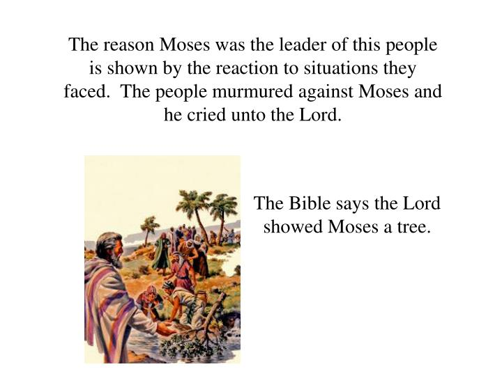 The reason Moses was the leader of this people is shown by the reaction to situations they faced.  The people murmured against Moses and he cried unto the Lord.