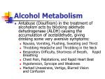 alcohol metabolism2