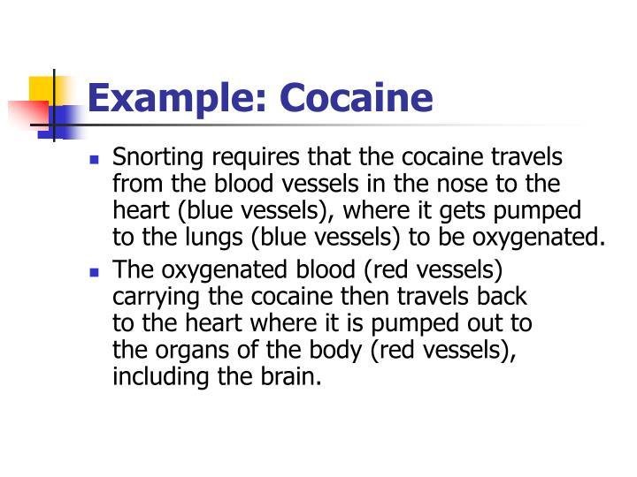 Example: Cocaine