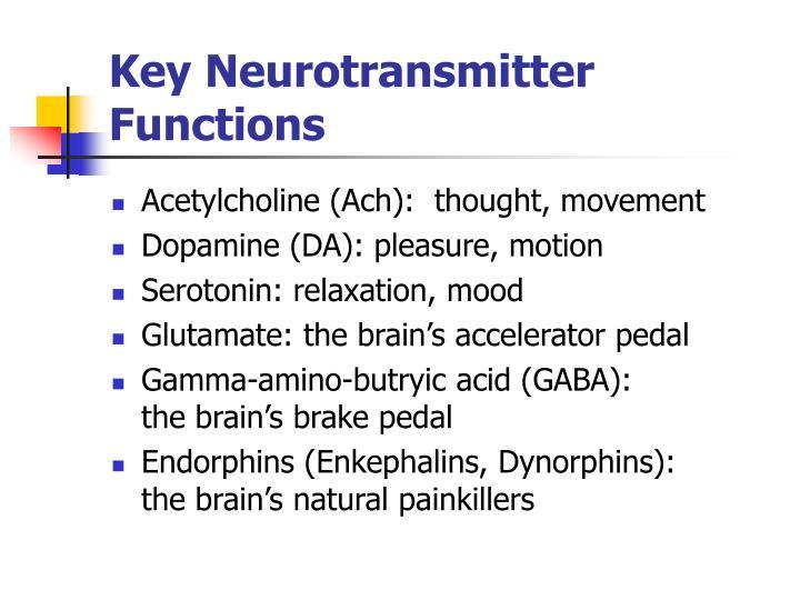 Key Neurotransmitter Functions