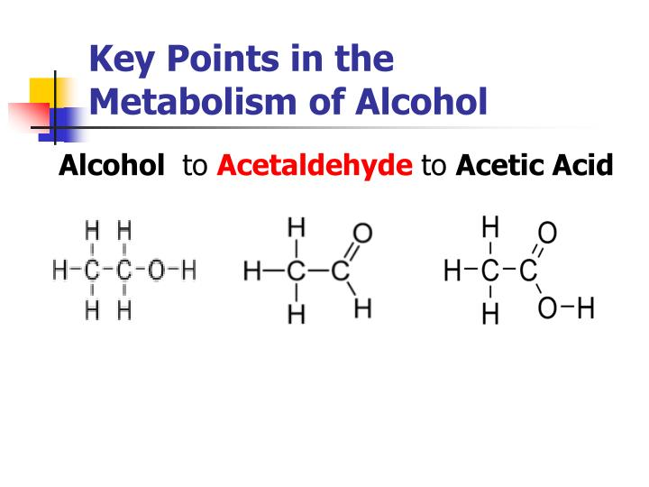 Key Points in the         Metabolism of Alcohol