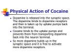 physical action of cocaine