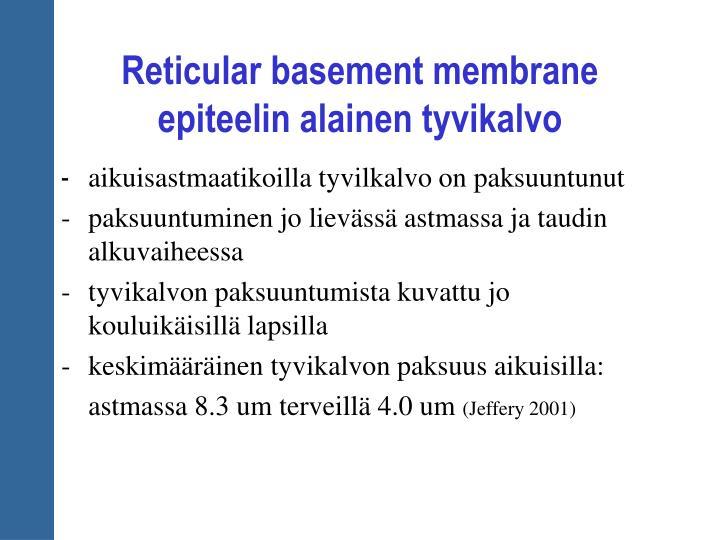 Reticular basement membrane