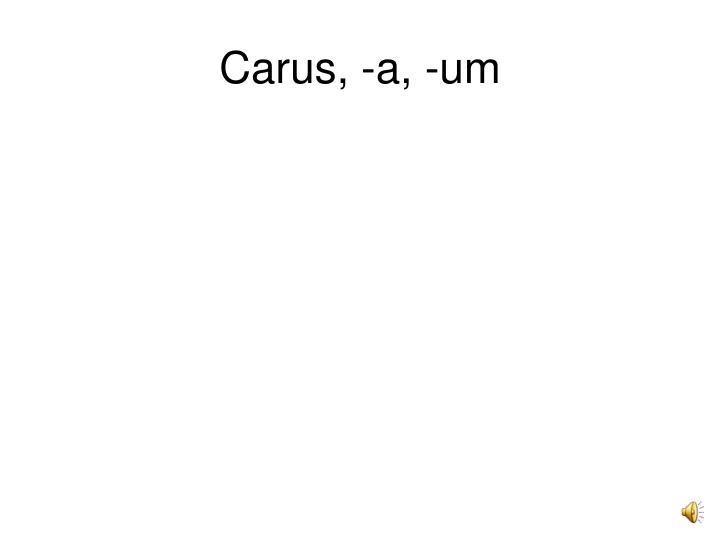 Carus, -a, -um