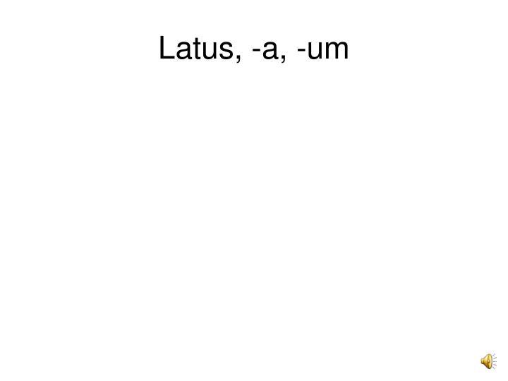 Latus, -a, -um