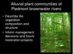 alluvial plant communities of piedmont brownwater rivers1