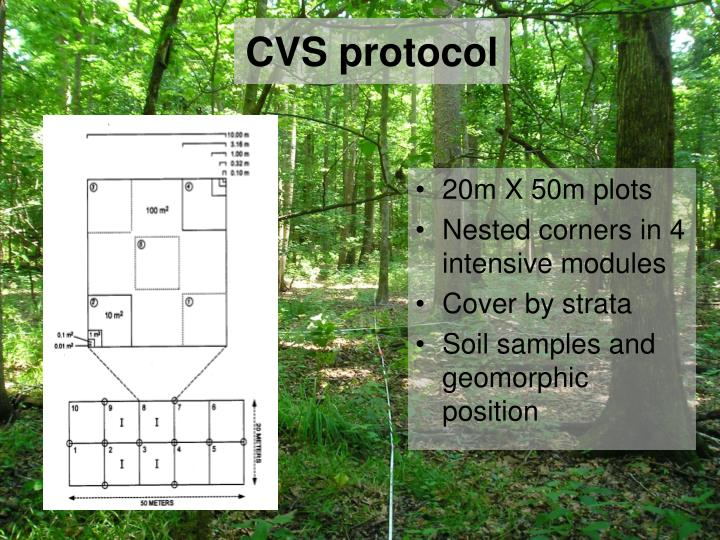 CVS protocol