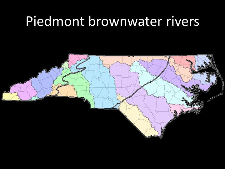 Piedmont brownwater rivers